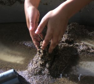 child's hands in wet sand at CuriOdyssey science museum
