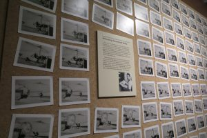 The Walt Disney Family Museum photo wall shows cells of animation
