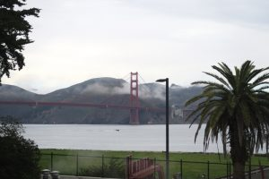 The Golden Gate Bridge as seen from The Walt Disney Family Museum