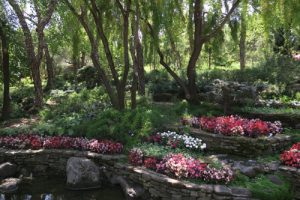 landscaping at Gilroy Gardens