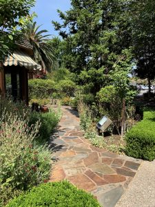 garden path at Ainsley House in Campbell