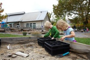 Two kids digging in backyard garden